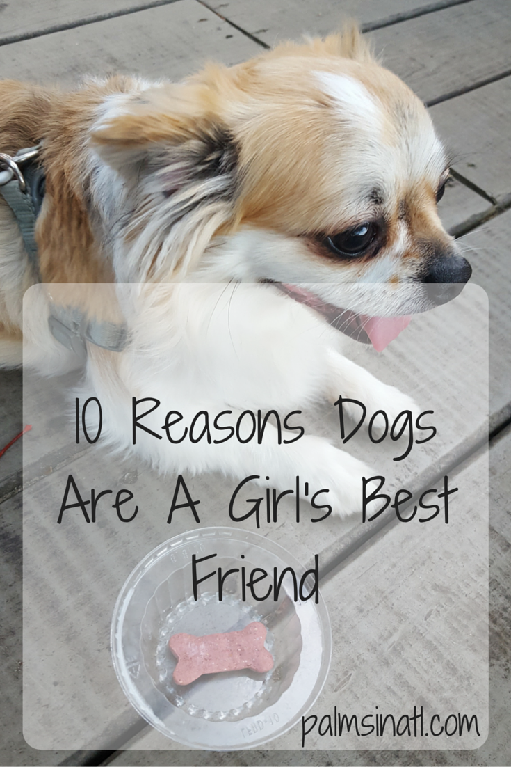 10 Reasons Dogs Are A Girl's Best Friend - The Palmetto Peaches