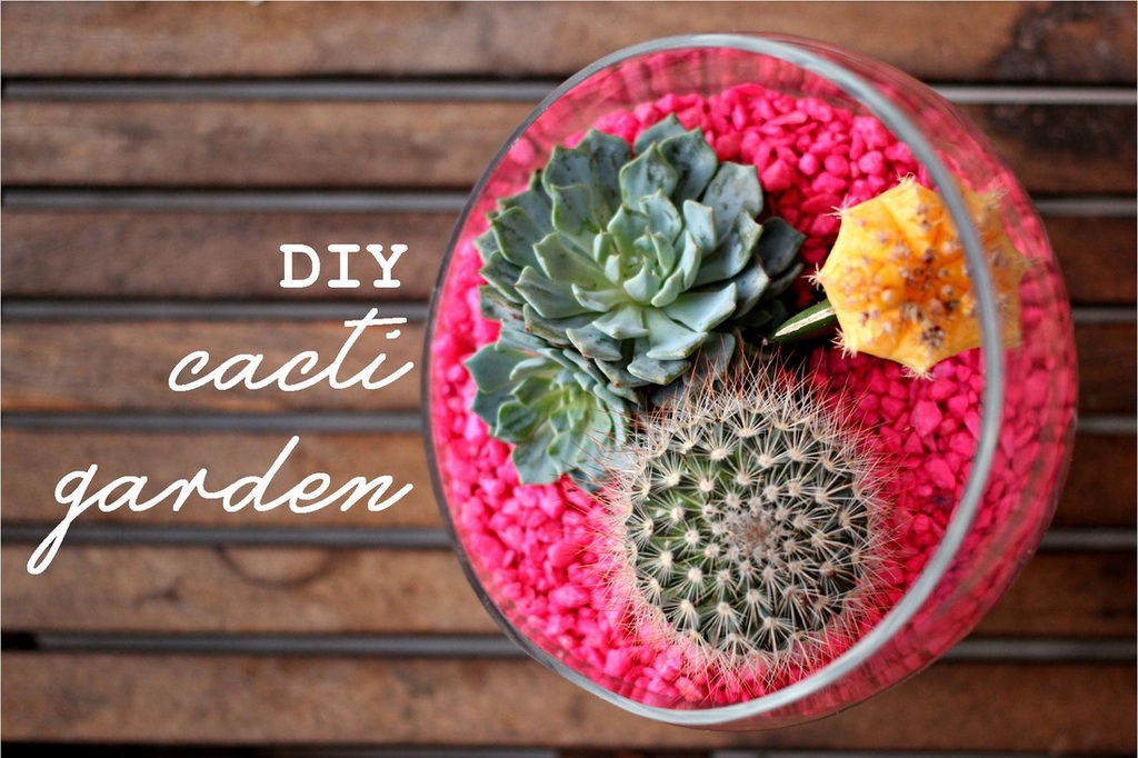 10 Summer DIY Projects (Roundup) - The Palmetto Peaches - palmsinatl.com