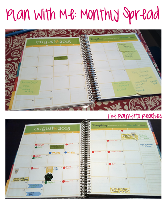 Plan With Me - Monthly Spread - The Palmetto Peachess