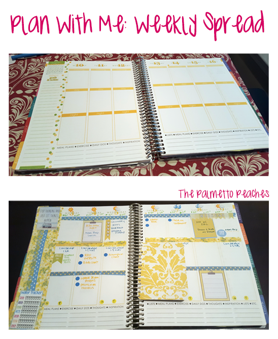 Plan With Me - Weekly Spread- The Palmetto Peaches