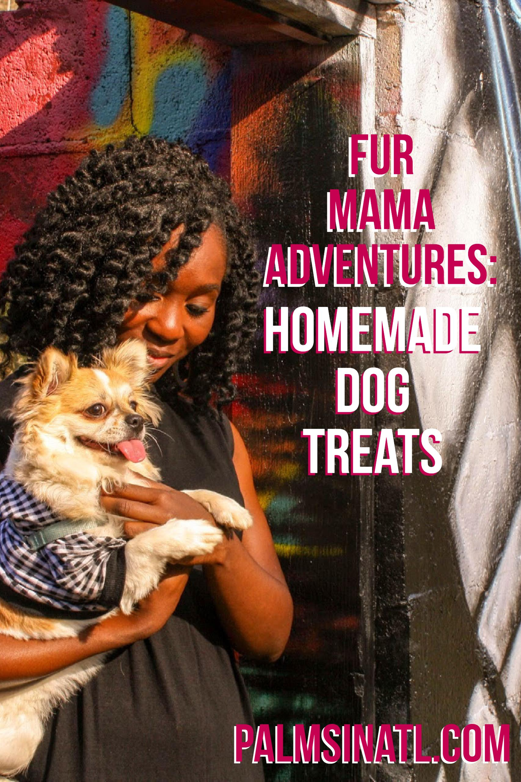 Fur Mama Adventures: Homemade Dog Treats- The Palmetto Peaches